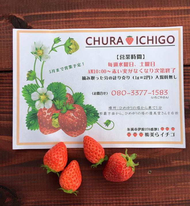 cyuraichigo2017